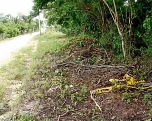 Se entregó a la justicia Orlando Gallego quien asesino a su compañera sentimental en la vía Cali-Candelaria
