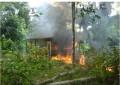 Policía antinarcóticos destruyó 13 laboratorios de coca en zona rural de Tumaco-Nariño