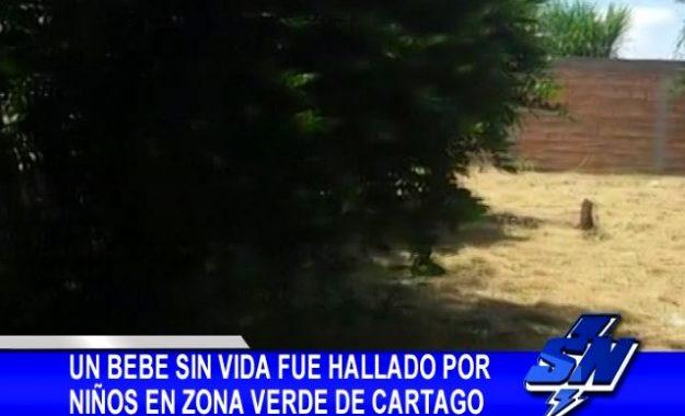 Un bebé sin vida fue hallado por niños en zona verde de Cartago