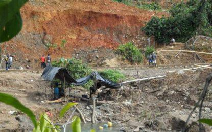 175 personas han sido capturadas en el Valle, Nariño y Cauca en 2016