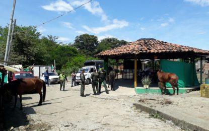 Carne de caballo iba a ser comercializada en Cali