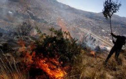 Altas temperaturas han generado más de 70 incendios en el Valle del Cauca
