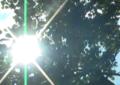 El próximo 24 de marzo se vivirá la hora del planeta en Cali