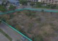Polémica por tala de 183 árboles en parqueadero de la Plaza de toros en Cali