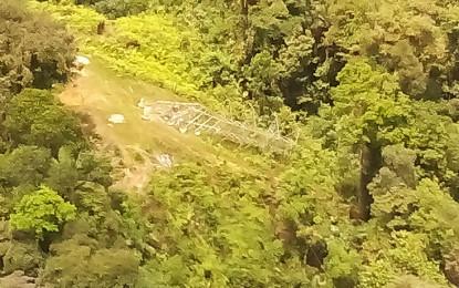 Destruidos 2 artefactos explosivos a 100 metros de la torre derribada por las Farc en zona rural de Buenaventura