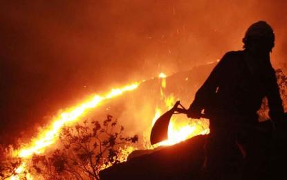 Fueron capturados 3 jóvenes, presuntos responsables de iniciar un incendio en zona forestal de Cali.