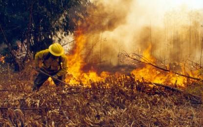 Gobernador del valle, declaro calamidad pública por oleada de incendios en el departamento.