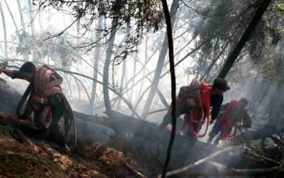 Incendio en zona rural de Jamundí ha consumido más de 100 hectáreas.