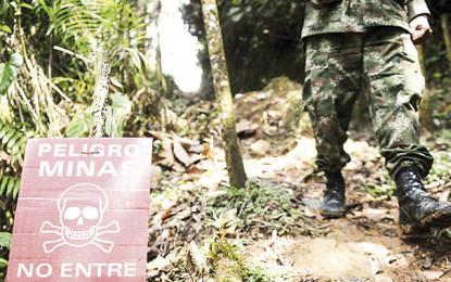 Fue neutralizado un campo minado de las Farc en zonas aledañas a Jamundí