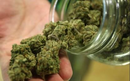 Fue capturado un hombre que trasportaba 8.000 gramos de marihuana, en el área rural de Palmira.