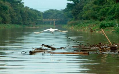 Por contaminación del río Cauca sancionan a Interaseo