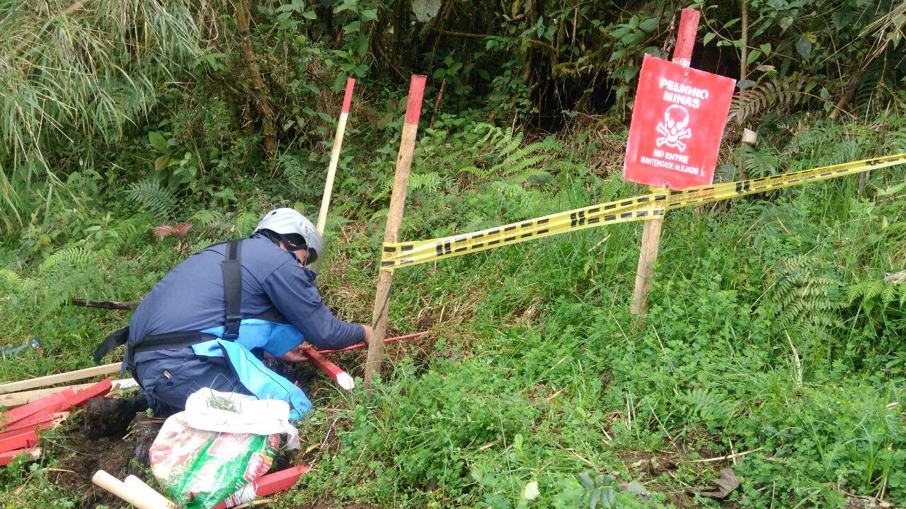 Destruídos más de 20 explosivos en el suroccidente Colombiano