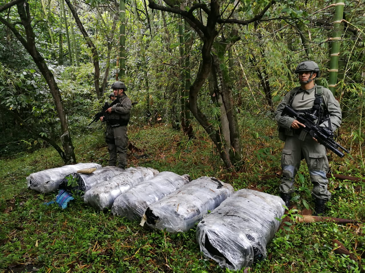 Destruídos 33 laboratorios para el procesamiento de cocaína en el suroccidente