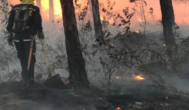 Bomberos de Cali están capacitados para atender incendios forestales