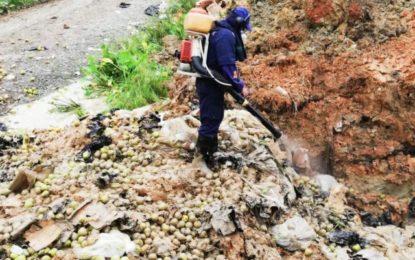 Peras provenientes de Chille llegan en mal estado a Buenaventura