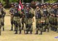 Alerta en el Valle por violencia en el Cauca