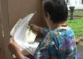5 personas fueron detenidas durante la jornada electoral en Cali