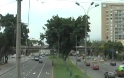 Se intervienen árboles en la Autopista Suroriental