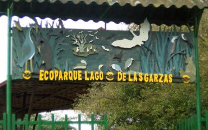 Más aire y biodiversidad en el renovado Eco parque Lago de las Garzas