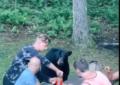 Un comensal inesperado: oso se 'cola' en picnic familiar
