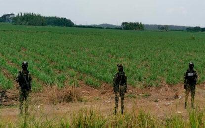 Amenazan de muerte a madre de una de las víctimas de Llano Verde