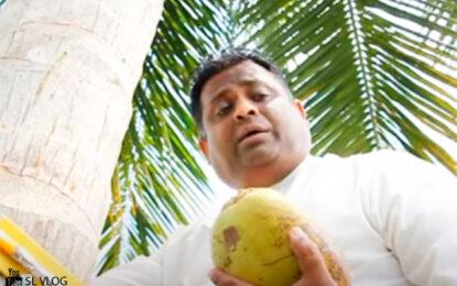 Viral: ministro se trepa en palma de coco para ofrecer un discurso