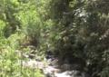 La cuenca del río Bolo será intervenida para salvarlo de la contaminación