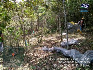 Cvc alerta sobre afectaciones ambientales en Golondrinas | Noticias de Buenaventura, Colombia y el Mundo