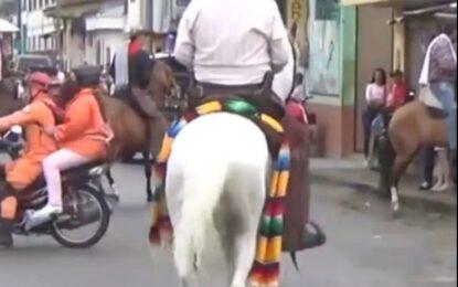 Concejal denuncia maltrato animal en cabalgata de inauguración en Vallegrande