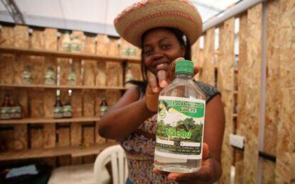 """Aprobada """"ley del viche"""", la bebida será patrimonio del Pacífico"""